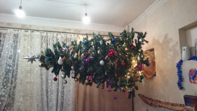 sapin perpendiculaire
